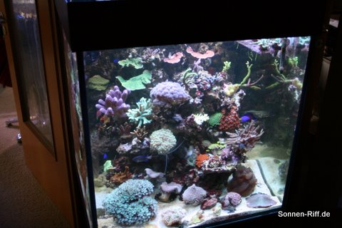 front-bild-aquarium