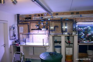 Technik des Meerwasseraquarium im Keller